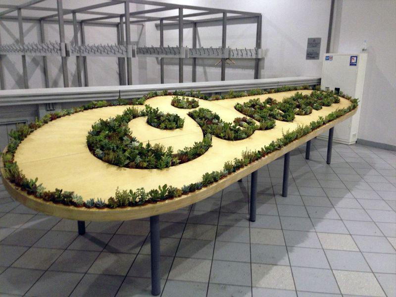 Фанерная столешница для установки цветочных горшков с кактусами Сільпо по лучшей цене в Украине
